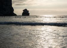 Surfers, sunset at Morro Bay Royalty Free Stock Image