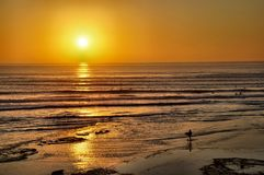 Surfers Coming in at Sunset Royalty Free Stock Images