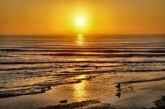 Surfers Coming in at Sunset Royalty Free Stock Photos