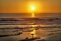 Surfers Coming in at Sunset Stock Images