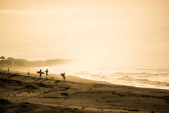 Surfers in the dawn at Playa Jaco, Costa Rica Royalty Free Stock Images