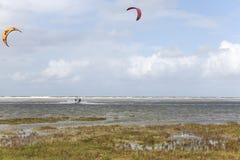 Surfers de cerf-volant dans le naturereserve en Hollande Image libre de droits