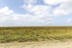 Surfers de cerf-volant dans le naturereserve en Hollande Photographie stock