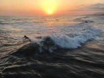 Surfers in de zonsondergang Stock Afbeelding