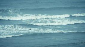 Surfers die Golven uit op zee vangen stock video