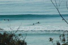 Surfers die op de volgende golf wachten Royalty-vrije Stock Foto's