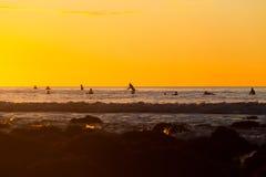 Surfers die op een golf wachten Stock Foto's