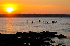 Surfers die op golven wacht stock foto's