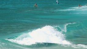 Surfers die op oceaangolven drijven stock footage