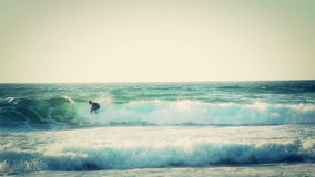 Surfers enjoying the wave seawater sport surfing Royalty Free Stock Photo