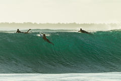 Surfers Escape  Large Wave Cyclone Royalty Free Stock Photos