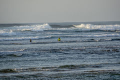 Surfers in Fuerteventura royalty free stock photo