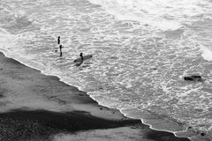 Surfers going into the water royalty free stock images