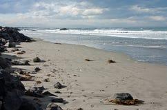 Surfers in golvende overzees in Sumner Beach in Christchurch in Nieuw Zeeland royalty-vrije stock fotografie