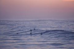 Surfers het wachten Stock Foto's