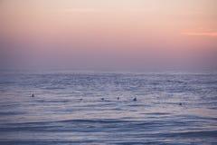 Surfers het wachten Stock Foto