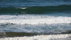 Surfers la Californie du nord nageant par des vagues banque de vidéos