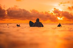 Surfers on line up in ocean at sunset or sunrise. Surfer and ocean Royalty Free Stock Images