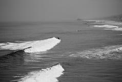 Surfers ocean Royalty Free Stock Photo