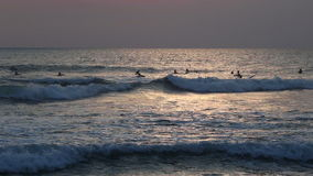 Surfers in the ocean stock video footage
