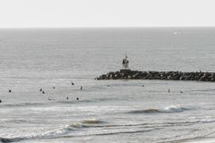 Surfers in the ocean surf at Virginia Beach, VA. Virginia Beach, VA - August 31, 2017: Surfers wait for the perfect wave in the ocean surf at Virginia Beach, VA royalty free stock images