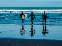 Surfers on Piha Beach, Auckland, New Zealand royalty free stock images