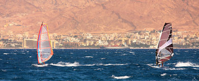 Surfers on the Red Sea. Stock Photos