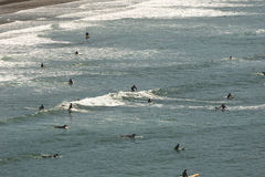 Surfers ride waves off the coast of Oregon Royalty Free Stock Image