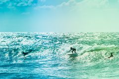 Surfers riding some waves on the sea. Extreme surfers riding some waves on the sea in France Royalty Free Stock Images