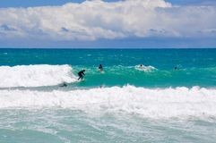 Surfers at Scarborough Beach, Western Australia Stock Photo