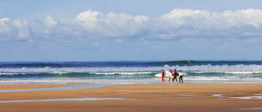Surfers searching for the best spot. Royalty Free Stock Photography