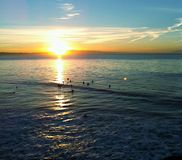 Surfers at Sunrise in Santa Cruz stock images