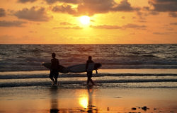 Surfers on sunset Royalty Free Stock Photography