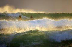 Surfers on sunset stock image