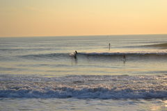 Surfers at sunset. Surfers on the beach at sunset in Lisbon, Portugal stock images