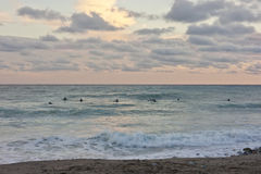 Surfers at sunset stock image