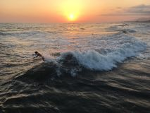 Surfers in the sunset. Guys surfing at the sunset on gorgeous waves stock image