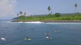 Surfers surfant sur la planche de surf sur les vagues bleues de mer à la vue aérienne de vacances d'été Surfant en île de Bali d' banque de vidéos