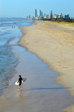 Surfers in Surfers Paradise Queensland Australia Stock Image