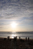 Surfers and swimmers on the beach. People swimming, surfing and watching an ocean sunset Stock Images