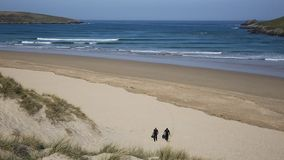 Surfers towards camera Crantock bay and beach North Cornwall England UK stock video