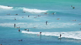 Surfers at Tropical Beach Paradise. Telephoto view at the beach resort in Waikiki, Hawaii. Lots of people surfing, swimming and enjoying the water stock footage