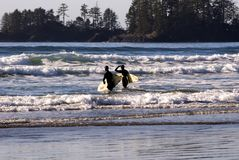 Surfers on Vancouver Island Royalty Free Stock Photos