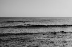 Surfers waiting Royalty Free Stock Photography