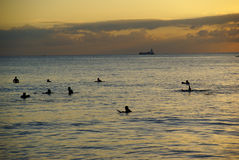 Surfers waiting for the last wave at sunset at Waikiki Beach Hon Stock Photos