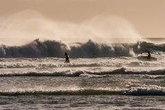 Surfers waiting for wave Royalty Free Stock Photo