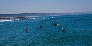Surfers waiting for Wave and surfing. Portugal , Costa de Caparica Royalty Free Stock Images
