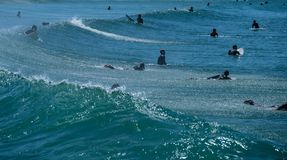 Surfers waiting for Wave and surfing. Portugal , Costa de Caparica Royalty Free Stock Photos
