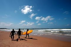 Surfers Walking on the Beach. Three surfers walking along the beach with surfboards on a clear and sunny day Royalty Free Stock Image