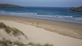 Surfers walking towards camera Crantock bay and beach North Cornwall England UK stock video
